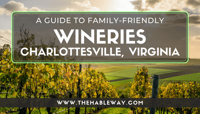 Kid-Friendly Wineries on the Monticello Wine Trail Around Charlottesville, VA