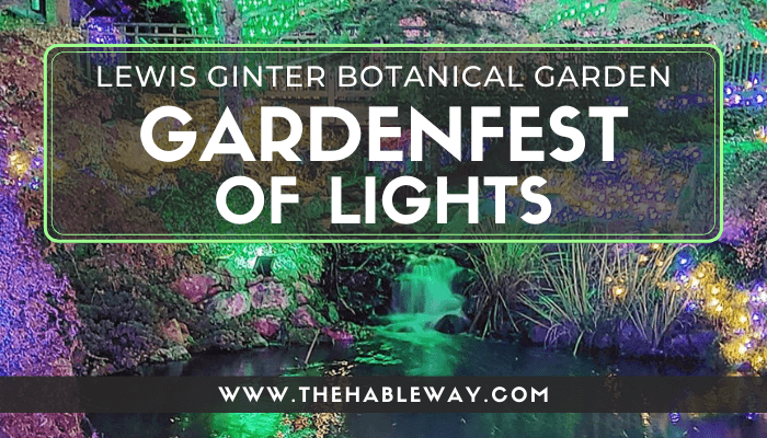 Magic in the Air – GardenFest of Lights, Richmond, VA
